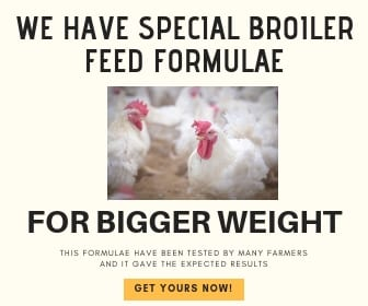 Buy Special Broiler Feed Formulae