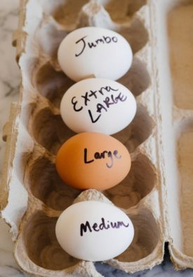 Factors Affecting Egg Size of Poultry Birds