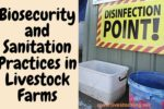 Biosecurity and Sanitation Practices in Livestock Farms