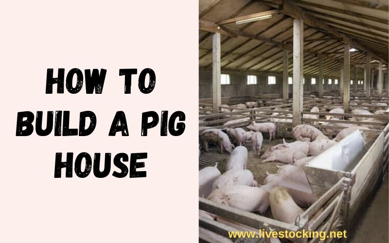 How to Build a Pig Pen or House