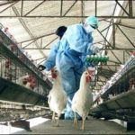 POULTRY EMPLOYEES