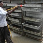 disinfection of egg trays