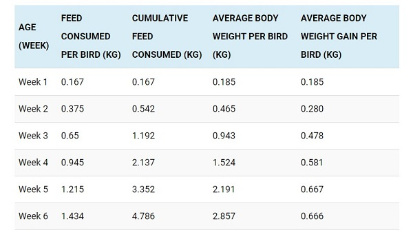 Standard Broiler Feed Chart [Plus Expected Weight / Growth]