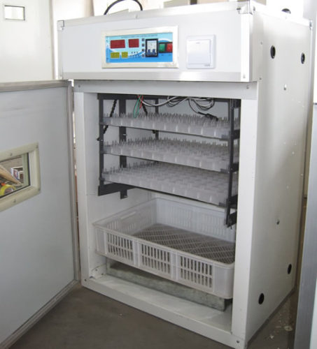 How to Choose the Right Chicken Egg Incubator for Hatching