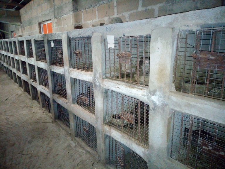 Pictures of Locally-Made Grasscutter Cages