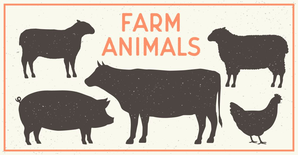 How to Make Money Without Owning a Working Farm