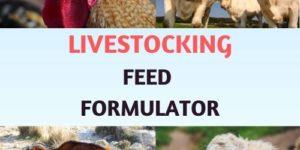Livestocking Feed Formulation Software