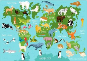 List of animals in the world